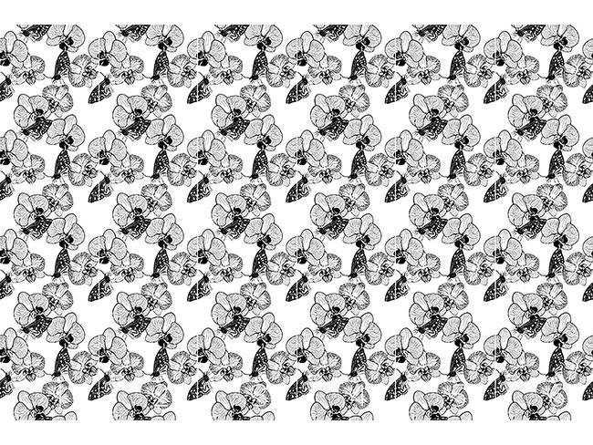 Designtapete Orchidee und Schmetterling