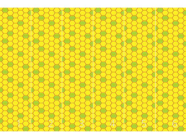 Designtapete Bienenwaben Zellen