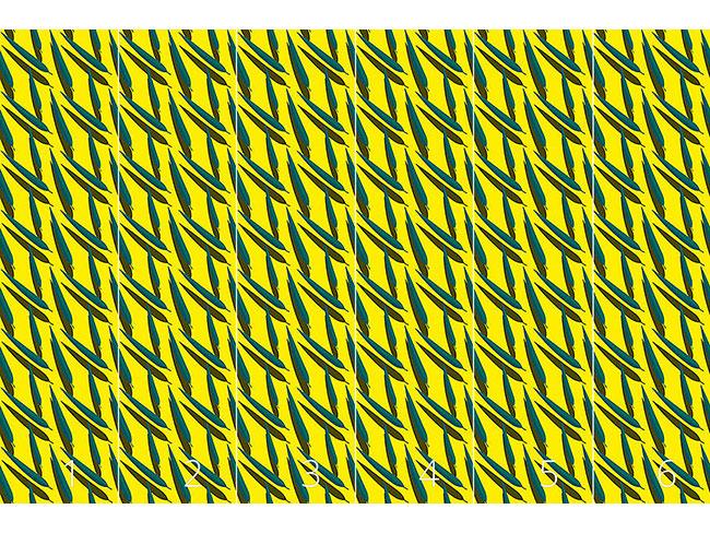 Designtapete Eukalyptusblätter