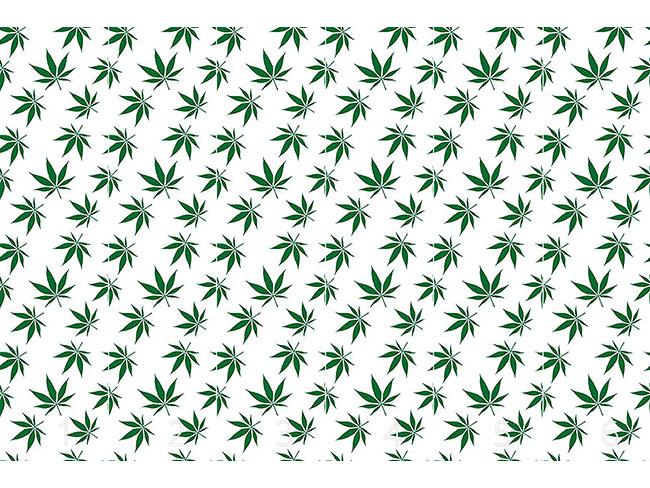Designtapete Cannabis