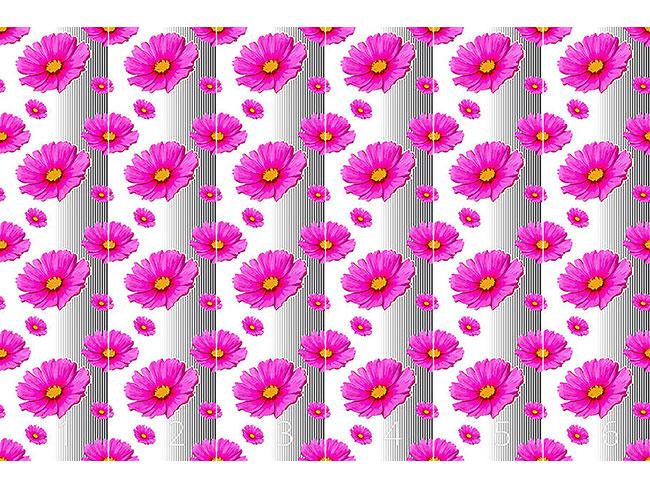 Designtapete Pink Cosmea