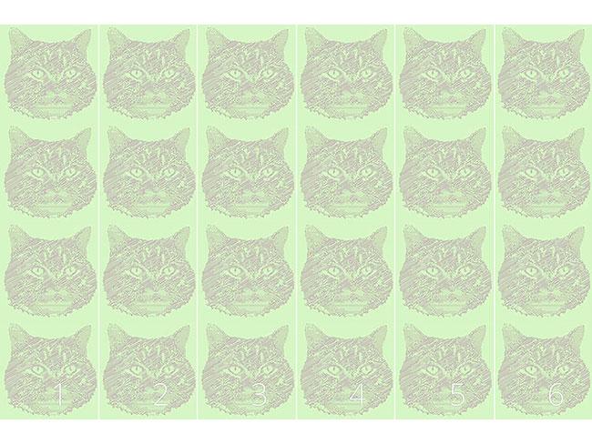 Designtapete Katzen Erinnerung