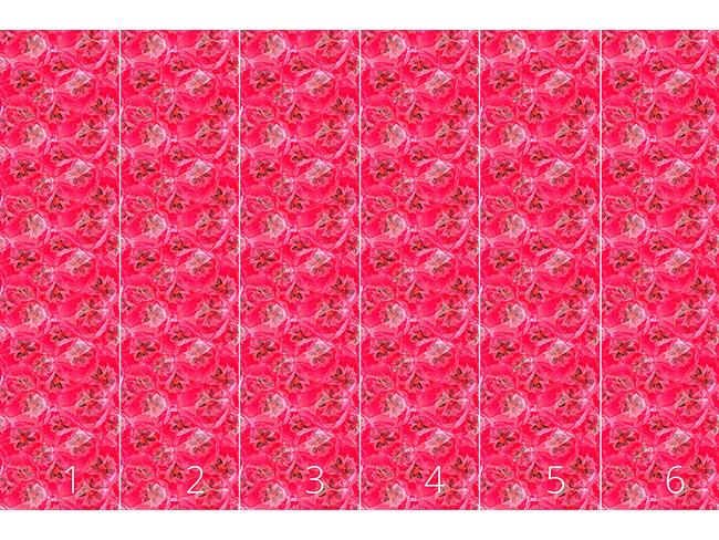 Designtapete Tulpen Seelen