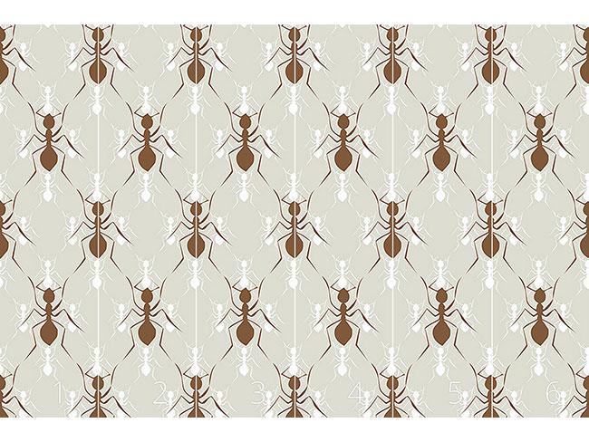 Designtapete Ameisen