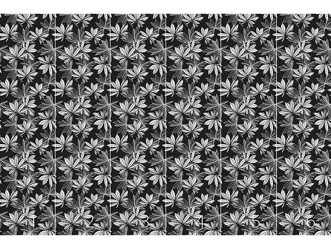 Designtapete Ich Träumte Von Kastanienblättern