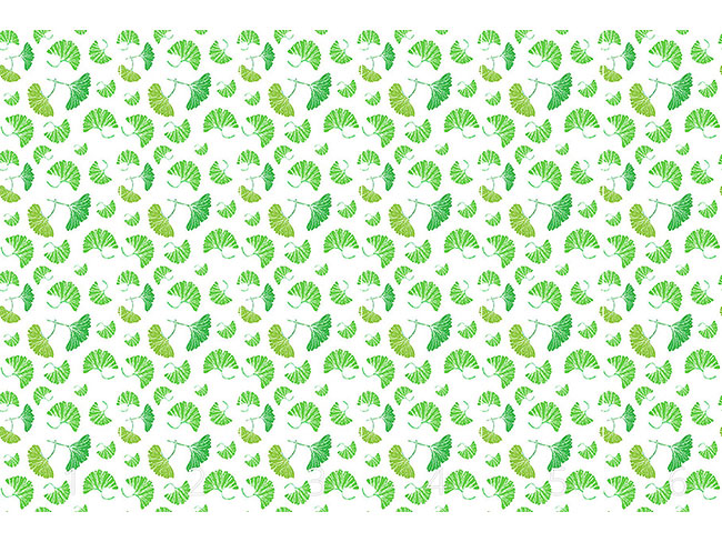 Designtapete Ginkgo Blätter