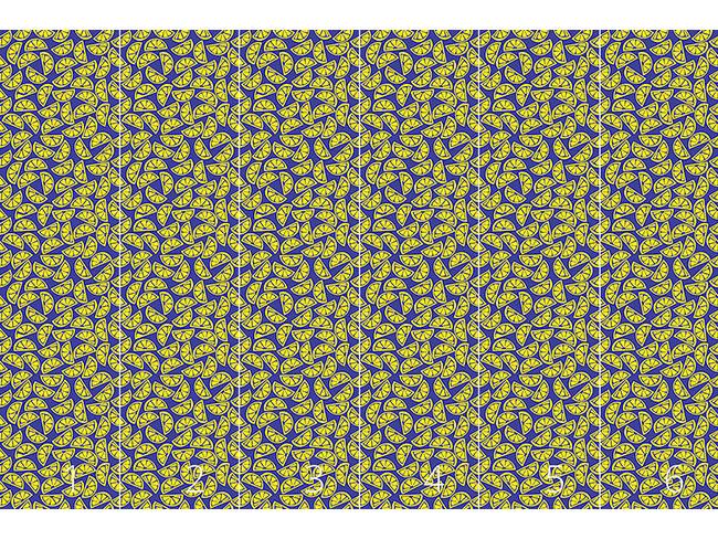 Designtapete Zitronenscheiben