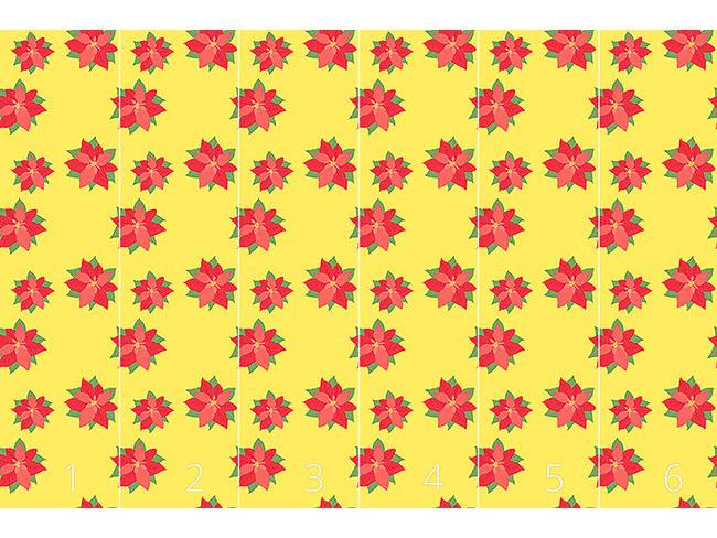 Designtapete Weihnachtsstern In Blüte
