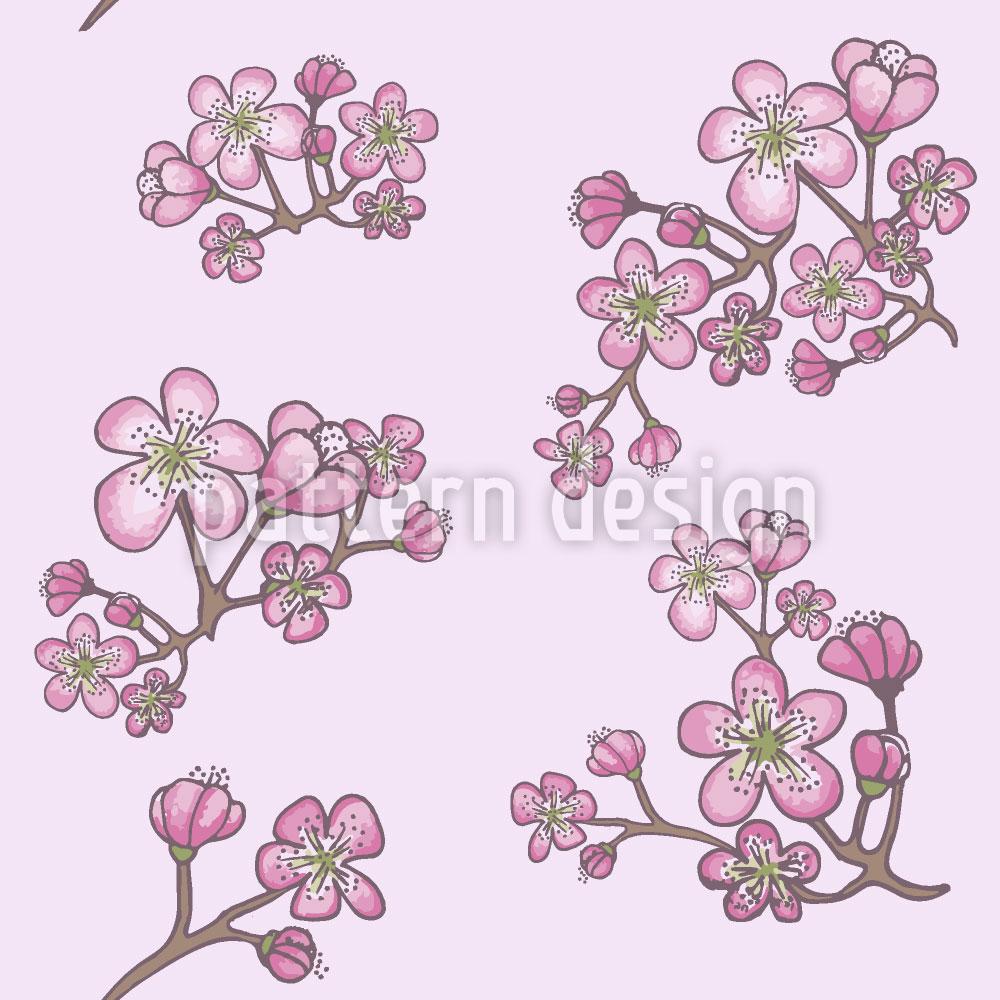 Designtapete Marillenblüten