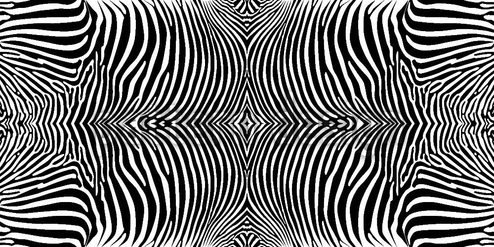Designtapete Zebra