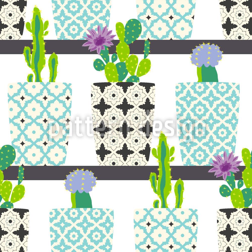 Designtapete Kaktus Töpfe Auf Regalen